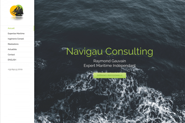 Navigau Consulting